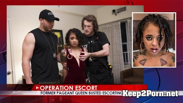 "Holly Hendrix in Porn ""Former Pageant Queen Busted Escorting"" [480p] OperationEscort"