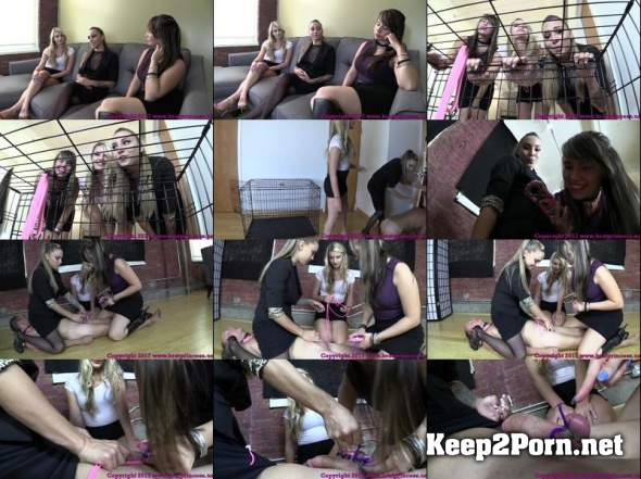 Real femdom castration wmv