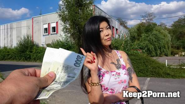 Akasha Coliun - Hot Asian chick loves girthy cock (HD / MP4) PublicAgent, FakeHub