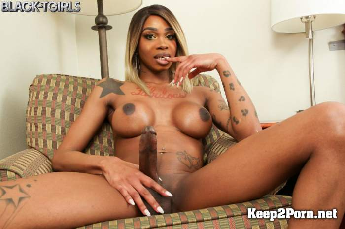 Holly Strokes - Holly Strokes Is Horny! [1080p / Shemale] Black-TGirls