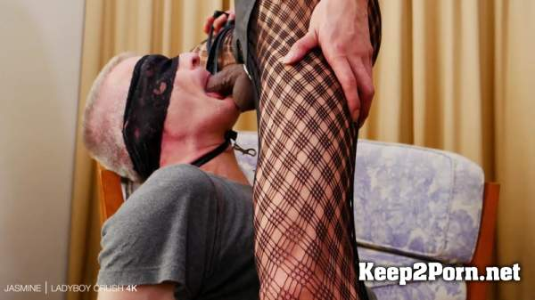 Jasmine / Creampie Fucking Kept On Leash (05 Sep 2019) (MP4, FullHD, Shemale) LadyBoyCrush