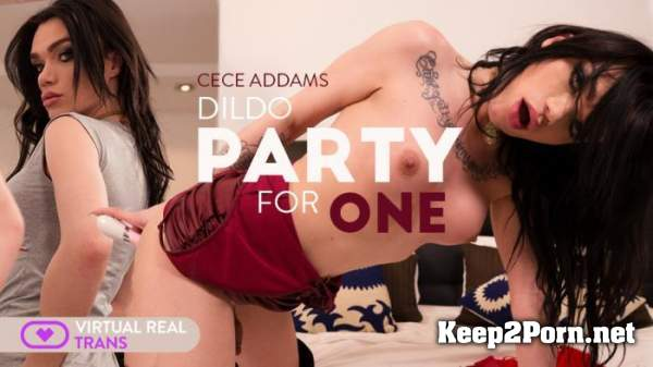 Cece Addams (Dildo Party For One) [Oculus] [2160p / VR] VirtualRealTrans