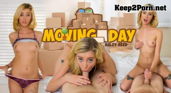 Haley Reed (Moving Day - Remastered / 02.05.2017) [Oculus Rift, Vive] (MP4, UltraHD 2K, VR) WankzVR